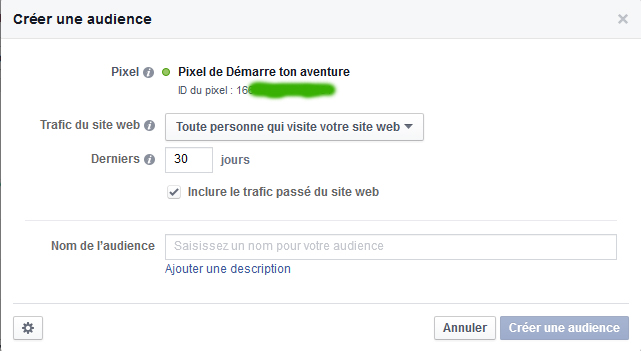 pixel-facebook-ads